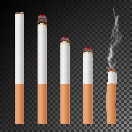 Cigarette Set Vector. Realistic Cigarette Butt. Different Stages Of Burn. Isolated Illustration. Burning Classic Smoking Cigarette On Transparent Background. Çizim