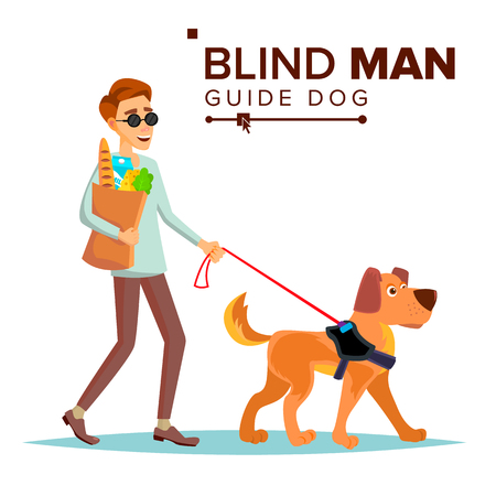 Blind Person And Guide Dog Walking