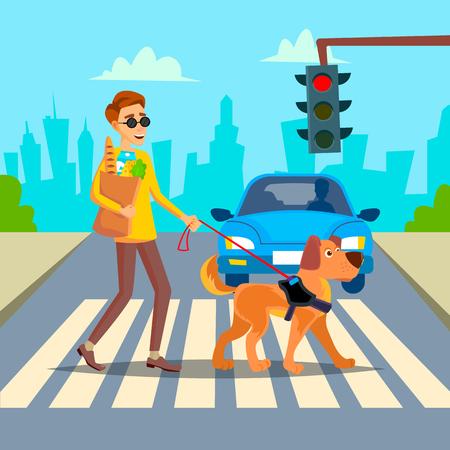 Blinde Person und Blindenhund . Auf Zebrastreifen