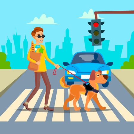 Blind Person And Guide Dog On Crosswalk