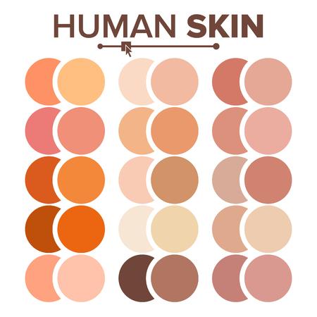 Skin Human Vector. Various Body Tones Chart. Realistic Texture Palette. Illustration