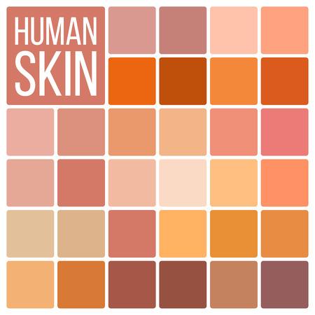 Skin Human Vector. Various Body Tones Chart. Realistic Texture Palette. Illustration Stock Vector - 121827646