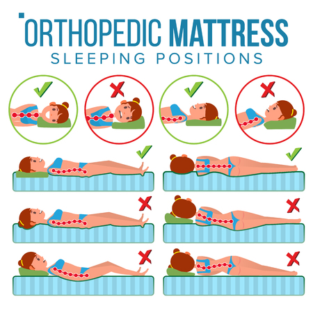 Orthopedic Mattress Vector. Curvature Of Human Spine. Sleeping Position. Spine Support. Health Body. Pillow. Comfortable Bed. Various Mattresses. Correct Spine. Isolated Flat Illustration