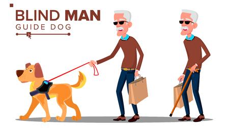 Vecchio cieco con occhiali scuri, canna da zucchero in mano e cane guida vettore. Illustrazione isolata Vettoriali