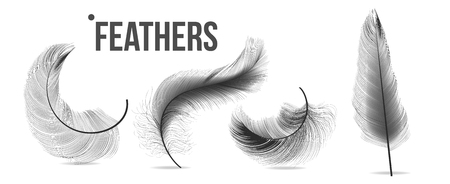 Black Feathers Set Vector. Different Falling Fluffy Twirled Feathers. Isolated Illustration