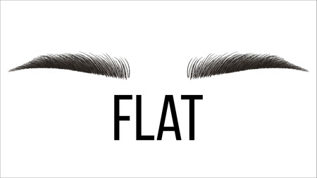 Flat Trendy Vector Hand Drawn Brows Shape. Permanent Brows Tattooing, Grooming Studio. Microblading Master. Beauty, Cosmetology Salon. Eyebrows Style With Title Realistic Illustration