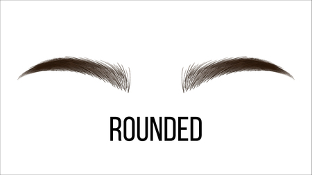 Medium Rounded Vector Hand Drawn Brows Shape. Female Brown Brows Style With Name Isolated Clipart. Microblading Master. Beauty, Cosmetology Salon. Eyebrows Shadows Realistic Illustration