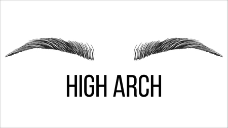 High Arch Vector Hand Drawn Brows Shape. Female Brows Style With Title Isolated Clipart. Microblading Master. Beauty, Cosmetology Salon. Makeup Tutorial Eyebrows Correction Realistic Illustration 向量圖像