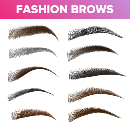Fashion Brows Various Shapes And Types Vector Set. Brown And Black Brows Pack. Beautician Parlor, Salon Sign Isolated Design Element. Beauty Industry. Trendy Eyebrows Realistic Illustration