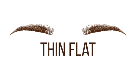 Thick Flat Brow Shape Vector Web Banner Template. Female Rounded Brow Style, Type Isolated Clipart. Microblading Master Salon, Beautician Parlor. Beauty Industry. Women Eyebrows Realistic Illustration 向量圖像
