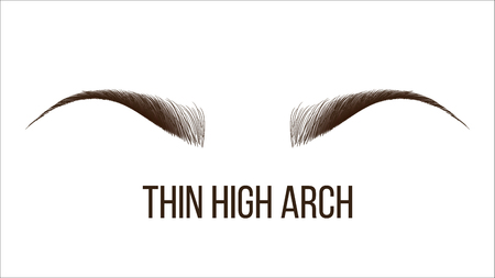 Thin High Arch Vector Hand Drawn Brows Shape. Female Brows Style With Title Isolated Clipart. Microblading, Tattooing Master Business Card. Beauty Industry. Eyebrows Realistic Illustration 向量圖像