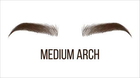 Plantilla de banner web de vector de forma de arco medio. Estilo de cejas femeninas, tipo gráfico aislado. Master Salon Microblading, Salón de Esteticista. Maquillaje de moda. Ilustración realista de cejas de mujeres Ilustración de vector