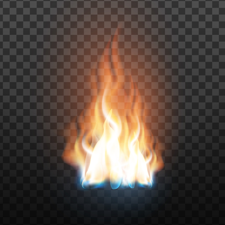 Animation Stage Of Decorative Fire Flame Vector. Abstract Flammable Wildfire, Burning Blaze With Translucent Elements Special, Glowing Fireball Effect On Grid Background. 3d Illustration Ilustrace