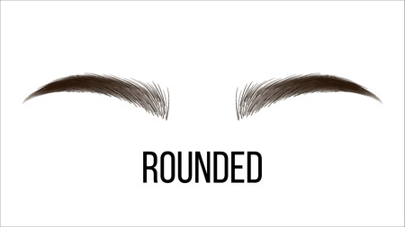 Medium Rounded Hand Drawn Brows Shape. Female Brown Brows Style With Name Isolated Clipart. Microblading Master. Beauty, Cosmetology Salon. Eyebrows Shadows Realistic Illustration
