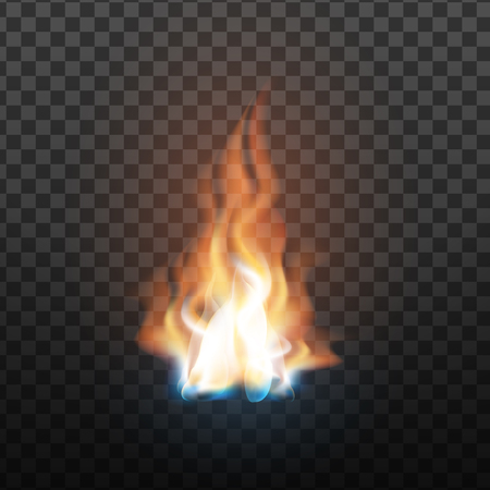 Animation Stage Of Burning Orange Fire . Fiery Heat Overlay Brush And Bonfire Burning Flare Design Decoration Closeup Isolated On Transparency Grid Background. 3d Illustration
