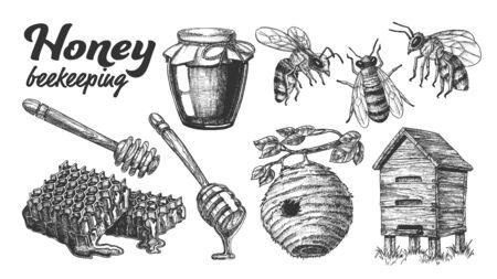 Collection miel apiculture rucher vecteur défini. Bouteille en verre et tranche de nid d'abeille, ruche en bois et maison de ruche sauvage sur branche, bâton de trempage au miel et abeille. Illustration de dessin animé conçu monochrome Vecteurs