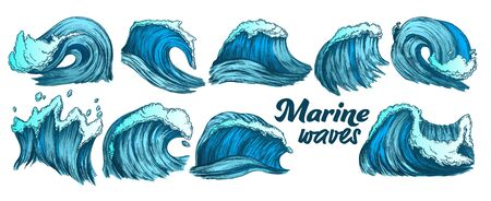 Designed Sketch Splash Marine Wave Set Vector. Collection Of Different Enormous Huge Breaking Ocean Sea Storm Water Wave With Foam. Nature Aquatic Tsunami Color Illustrations
