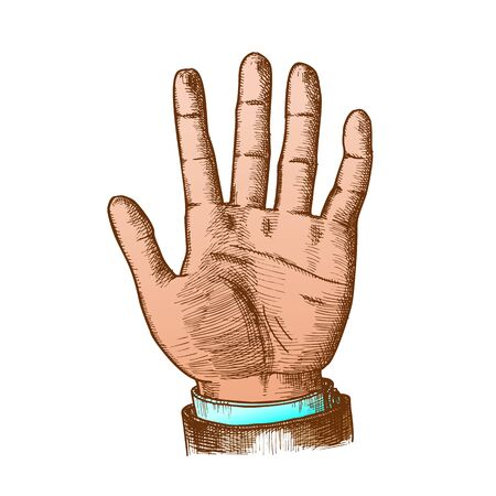 Male Hand Make Gesture Five Fingers Up Vector. Businessman Demonstrate Gesture Sign Amount. Man Open Palm Gesturing Counting Number Signal Color Hand Drawn Closeup Illustration Standard-Bild - 132380341