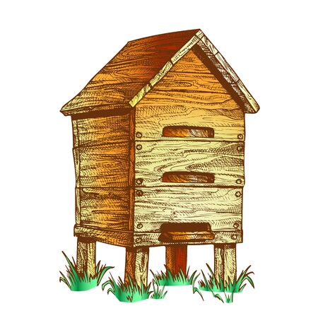 Wooden Beehive Apiary On Grass Apiculture Vector. Vintage Bee House Hive Beehive For Honey Healthy Food Products. Agriculture Farming Building For Flying Animal. Color Illustration Illustration