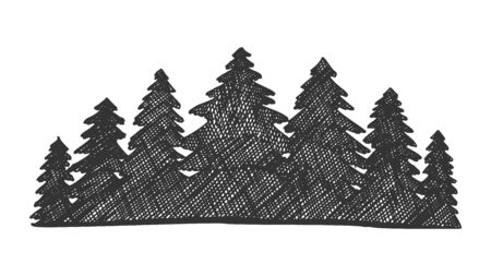 Drawn Landscape Pinery Coniferous Forest . Black And White Silhouette Spruce Forest. Monochrome Ink Design In Retro Vintage Style Pine Tree Wood Nature Ecological Land Cartoon Illustration