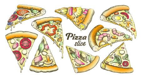 Color Assortment Different Slice Pizza Set Ink Vector. Collection Slice Cheese Pizza With Ingredients Mushroom And Shrimp Prawn, Tomatoes And Onion Concept. Designed Template Illustrations
