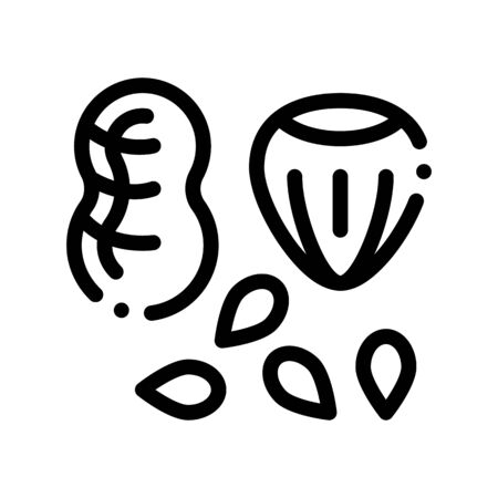 Assortment Healthy Food Nuts Vector Thin Line Icon. Bio Eco Nuts Peanut, Filbert Hazel-nut And Seeds Linear Pictogram. Organic Healthcare Vitamin Delicious Nutrition Monochrome Contour Illustration