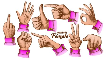Color Multiple Female Caucasian Hand Gesture Set . Collection Of Different Arm Gesture. Ok And Peace, Palm And Fist, Show Direction And Showing Signal. Hand Drawn In Retro Style Illustrations