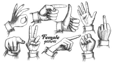 Multiple Female Caucasian Hand Gesture Set . Collection Of Different Arm Gesture. Ok And Peace, Palm And Fist, Show Direction And Showing Signal. Hand Drawn In Retro Style Illustrations 版權商用圖片