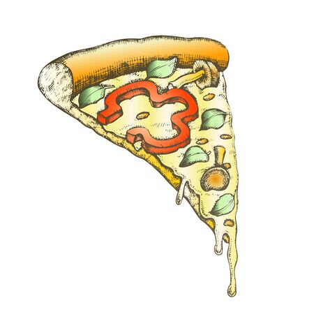 Color Vegetarian Italian Slice Pizza Hand Drawn . Slice Cheese Pizza With Ingredients Mushroom Honey Agaric And Paprika Pepper, Basil Leaves And Oregano Concept. Designed Illustration Stock Photo