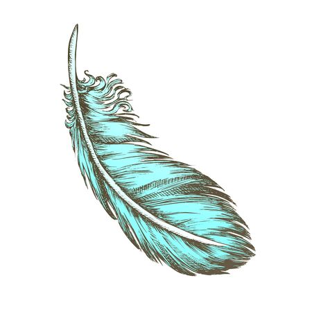 Color Lost Bird Outer Element Feather Monochrome Vector. Decorative Feather Flyer Detail Aid In Flight, Thermal Insulation And Waterproofing. Designed In Retro Style Illustration