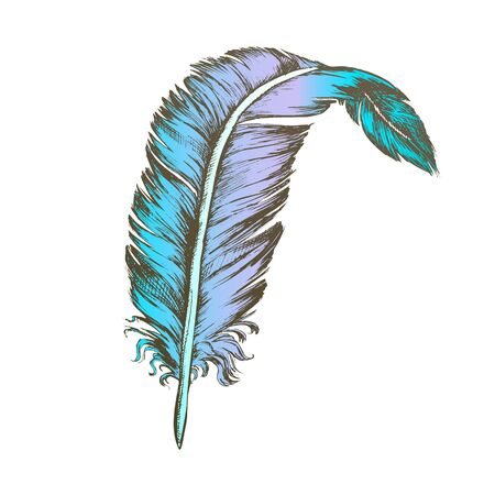 Color Decorative Bird Element Feather Vintage Vector. Standing Feather Cover Exterior Flyer Body Detail Writer Ancient Ink Tool. Template Designed In Retro Style Illustration Illusztráció