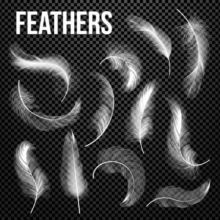 Feathers Set . Different Falling White Fluffy Twirled Feathers. Feather Bird, Soft White Plume Design. Insomnia, Healthy Sleep, Dreams Concept. Realistic Illustration