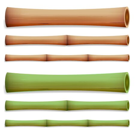 Bamboo Stems Isolated. Green And Brown Sticks. Illustration. Realistic Element