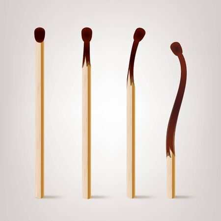 Realistic Burnt Match . Various Stages Of Matches Burning Set Isolated.