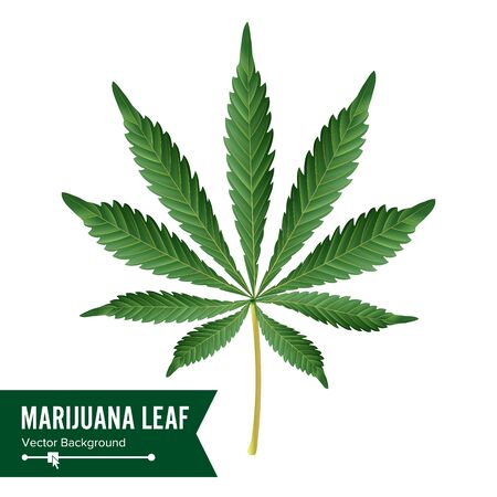 Cannabis Icon . Medical Green Plant Illustration Isolated On White Background. Graphic Design Element For Printables, Web, Prints