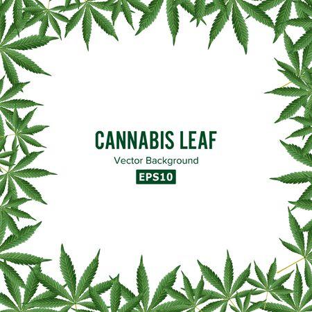 Cannabis Background. Marijuana Frame Green Leaf