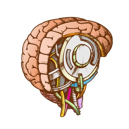 High Technology Robotic Brain Color Vector. Artificial Intelligence Concept In Form Of Human Brain. Electronic Mind Cyberbrain Hand Drawn In Vintage Style Illustration