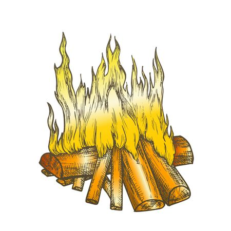 Traditional Burning Firewood Vector. Forest Burn Firewood For Warm. Warming Camping Tourist Campsite Light Element Hand Drawn In Retro Style Color Illustration