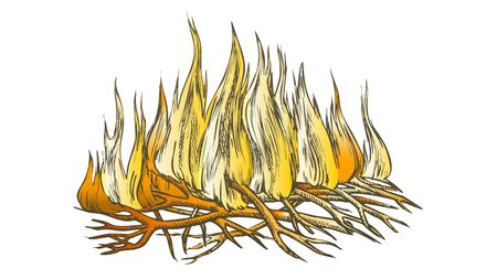 Traditional Burning Camping Fire Color Vector. Tree Branch Sticks Twigs Fire Campfire. Sprouts Of Flame And Offshoot Of Plant Hand Drawn In Retro Style Illustration
