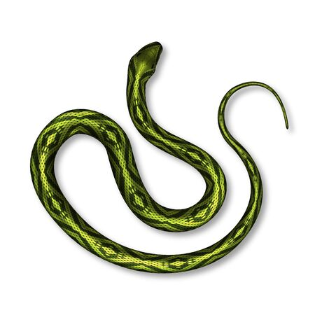 Serpente velenoso con colore brillante vista dall'alto vettore. Serpente endemico della pelle tropicale dorata e verde selvaggia. Vipera velenosa strisciante pericolosa. Illustrazione realistica 3d del predatore mortale del mammifero del vertebrato Vettoriali