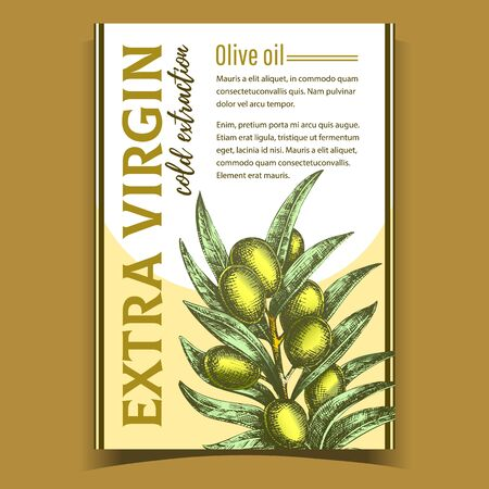 Natural Fresh Olive Tree Branch Banner Vector. Extra Virgin Cold Extraction For Olive Oil Premium Quality. Hand Drawn Vegetable With Green Leaves Layout Colored Poster Illustration 일러스트