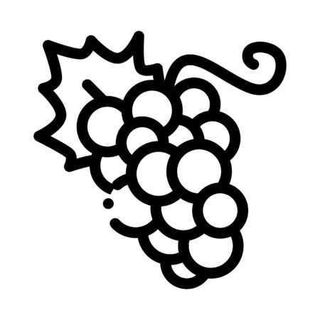 Grape Berries Icon Vector. Outline Grape Berries Sign. Isolated Contour Symbol Illustration