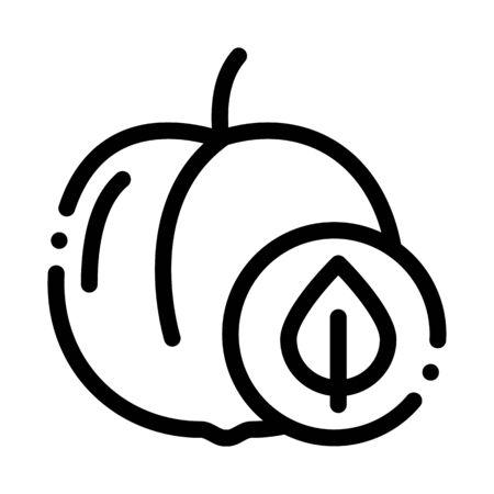 Peach Fruit Leaf Icon Vector. Outline Peach Fruit Leaf Sign. Isolated Contour Symbol Illustration Çizim