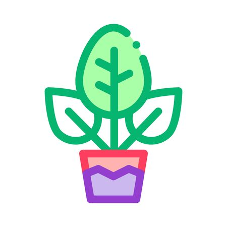 Plant In Pot Icon Vector. Outline Plant In Pot Sign. Isolated Contour Symbol Illustration 向量圖像