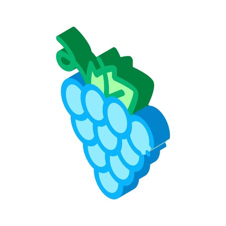 Grape Wine Berry Icon Vector. Isometric Grape Wine Berry sign. color isolated symbol illustration