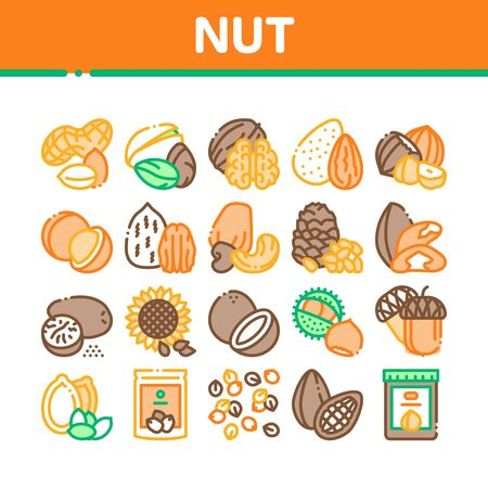 Nut Food Different Collection Icons Set Vector. Peanut And Almond, Chestnut And Macadamia, Cashew And Pistachio, Pine And Sunflower Seeds Concept Linear Pictograms. Color Illustrations