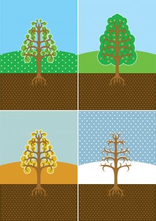 four seasons trees. Vector