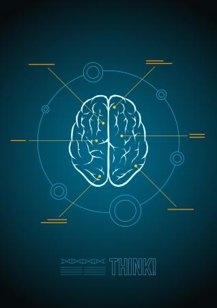 psicologia: Cerebro Vector plantilla de infograf�a