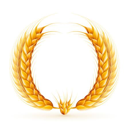 realistic wheat wreath design.  イラスト・ベクター素材