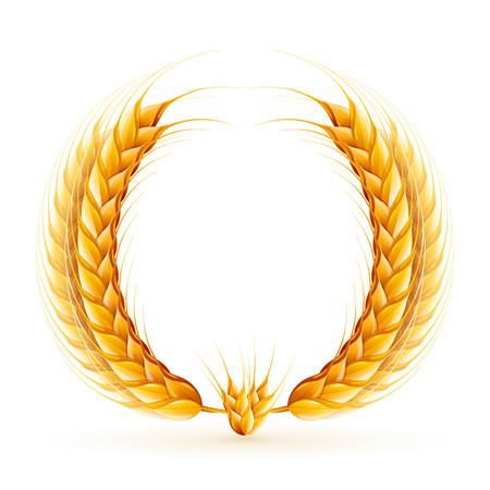 realistic wheat wreath design. Vectores